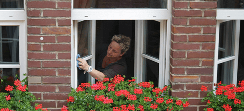 Aspen's Window Cleaning Tips
