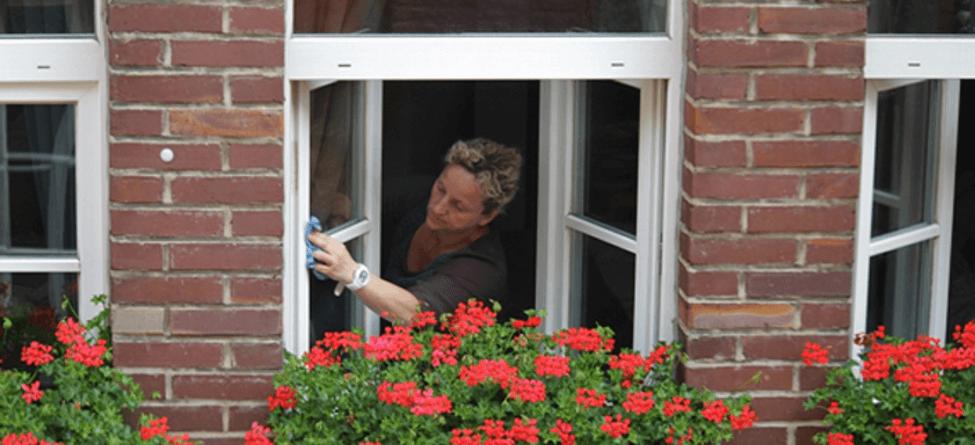 Aspen's Window Cleaning Tips