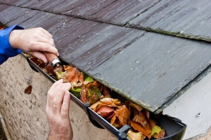 Gutter clogged with leaves and debris