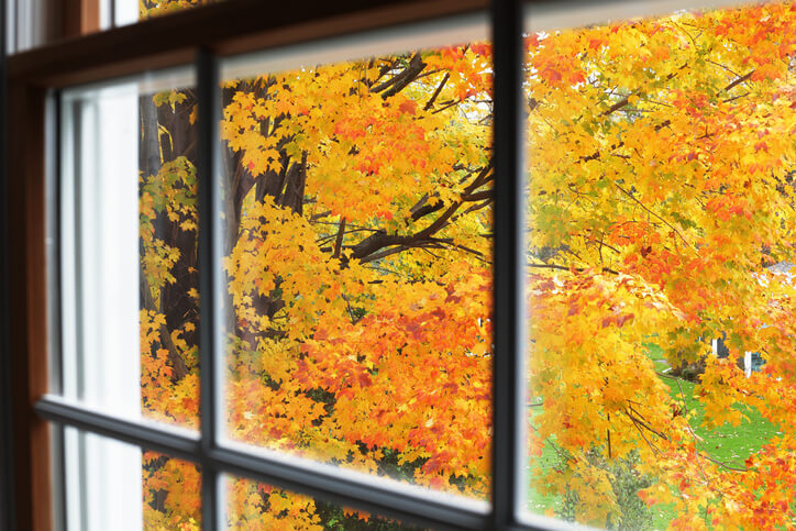 Best Time Of Year To Replace Your Windows